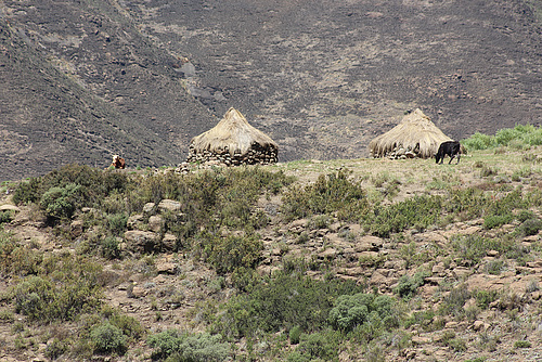 Rural Dwellings in Lesotho