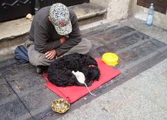 Beggar, dog and mice.