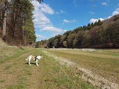 Blankenheim - Lampertstal