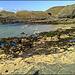 Basset Cove to Porthcadjack. Part of my low tide walk.