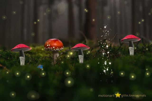 dancing mushrooms :)