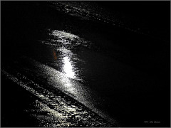 Regenpfützen ... puddles of rain