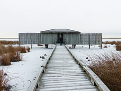 The birding blind at Frank Lake
