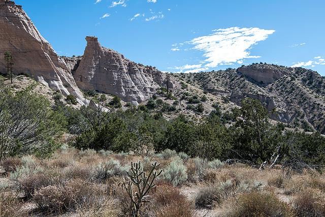 New Mexico slot canyon20