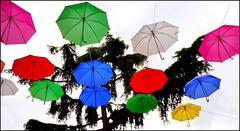 Oggetti appesi : Ombrelli colorati per distogliere lo sguardo dal cemento della città