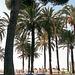 20161102 122702Hw [R~E] Hotel Atalaya Park, Estepona, Andalusien, Spanien