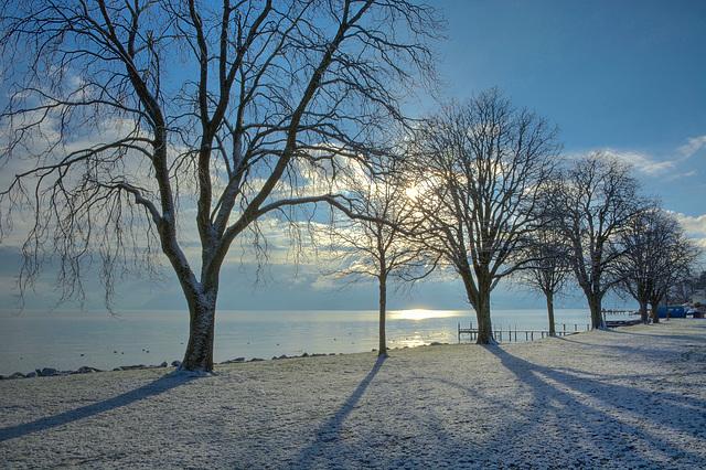 Ambiance hivernale à St. Prex (VD)