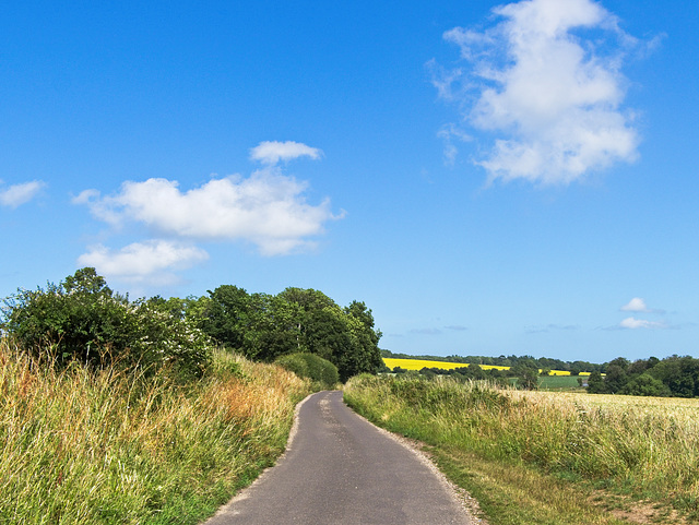 West Sussex Countryside (PiP)