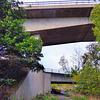 Bridges & fences HFF.