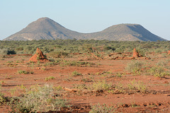 Namibia, The Edge of African Savannah