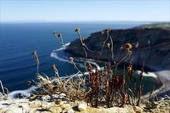 Cabo Espichel, poesia da terra sedenta