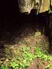 Furna do Enxofre (Sulphur Grotto).