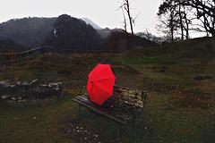 umbrella - solitario