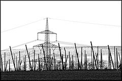 Strom, Stirl und Steggali :)