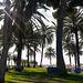 20161102 123352Hw [R~E] Hotel Atalaya Park, Estepona, Andalusien, Spanien