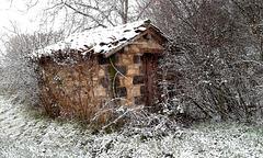 Cadole sous la neige !