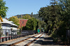 Sonoma-Marin rail (#0005)