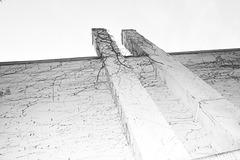 16. »Belvedere«
