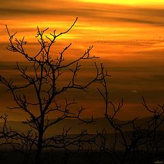 lever de Soleil dans ciel voilé