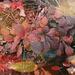 Il regalo dell'autunno