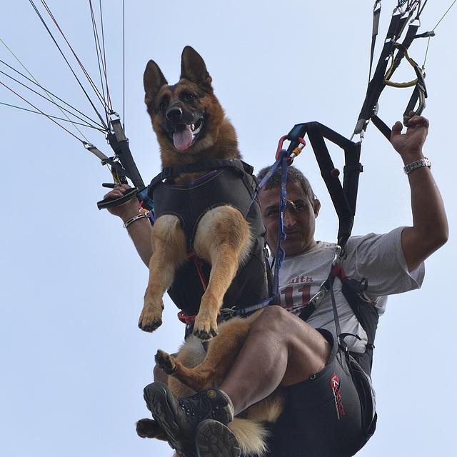 Parapente con el perro