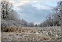 Frost in the valley.
