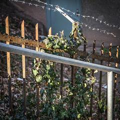 Fence overkill;-)
