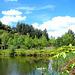 A                                                                                          Very Beautiful Pond