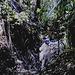 69 Deep Jungle Walk