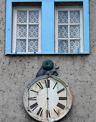 Fenêtres de Monsieur Le Lapin Blanc au Pays des Merveilles .
