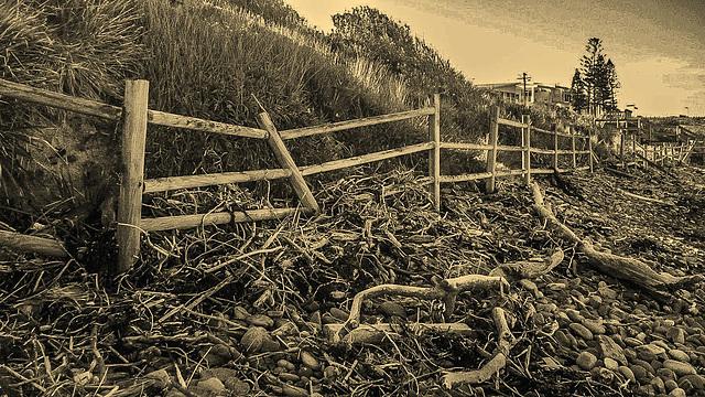 Rickety Fence