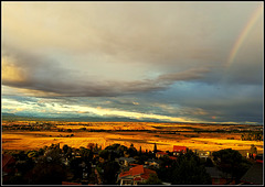 Late afternoon, golden October