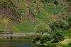 Calmont, der steilste Weinberg Europas