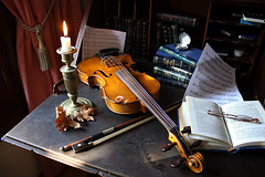 MY VIOLIN AND A SNAIL