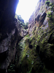 Looking up, from the Sulphur Grotto.