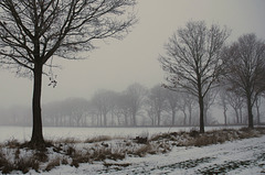 Winter (PiP)