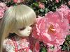 Lumi loves roses
