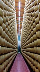 Alles Käse (1)
