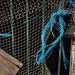 Penedos, Blue rope, HFF