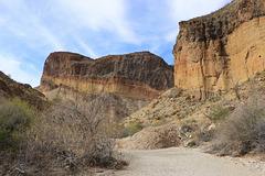 Burro Mesa Hike