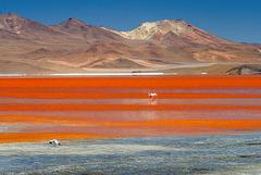 Laguna Colorada (PiP)