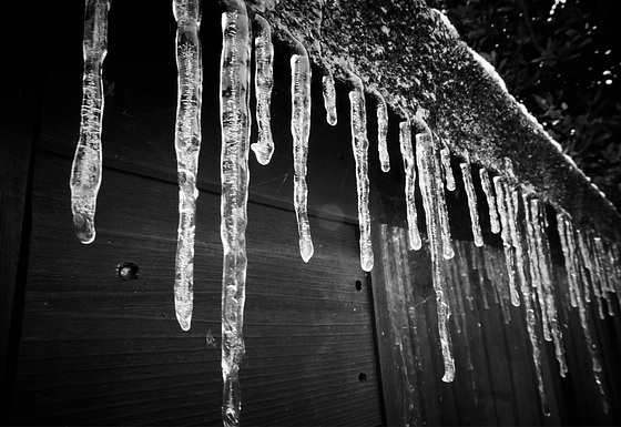 The Ice Returns