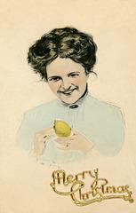 Merry Lemony Christmas
