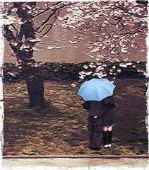 l'affaire du parapluie bleu
