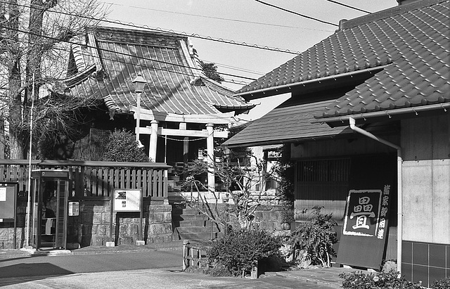 Shrine and a tatami mat store