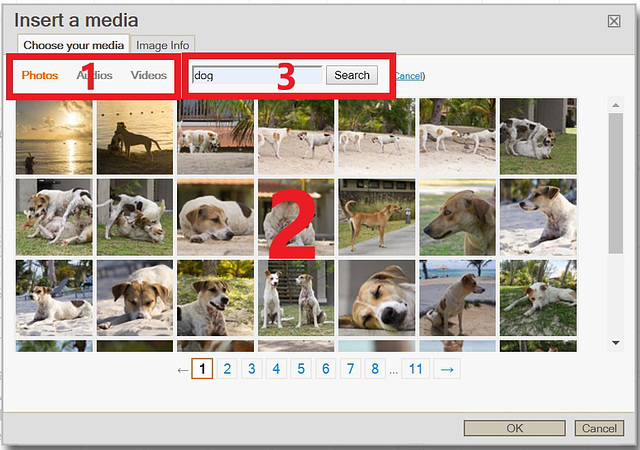 choose photo for article