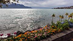 190425 Montreux vaudaire 0