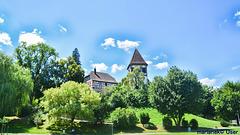 Walterichskirche Murrhardt