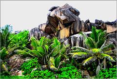i graniti di La Digue (321)