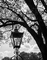 Lantern, Tryon Palace